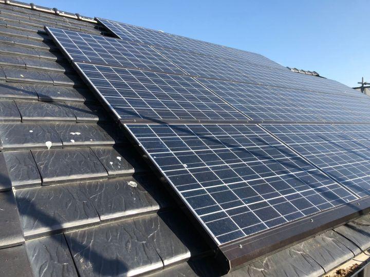 太陽光発電パネルと鳩
