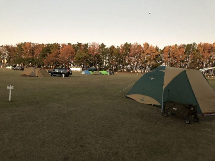 冬のキャンプ【浜松市渚園キャンプ場】ワクワクブログ